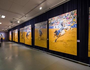 Відкриття виставки Майкла Блейзера «Життя, як Родео»